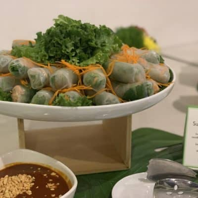 Asian Mint Catering with Fresh Summer Rolls Closeup